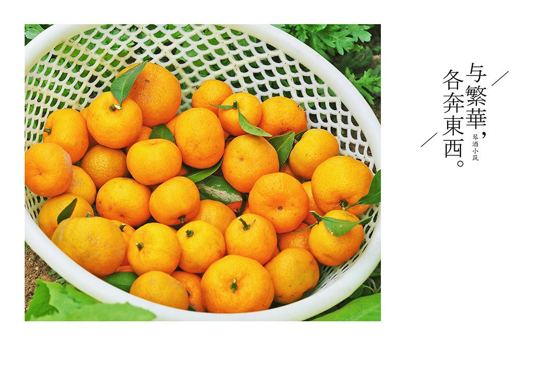 水果底图图片素材田园
