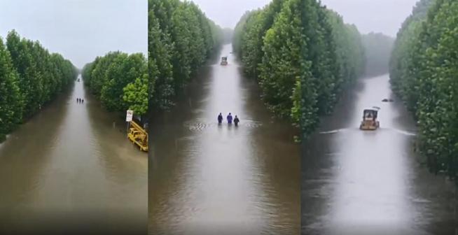 """远看是河 近看…原来是桃花岭大道变""""河"""""""