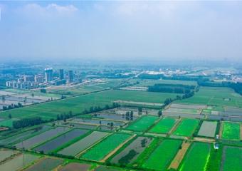 仙桃未来城中心
