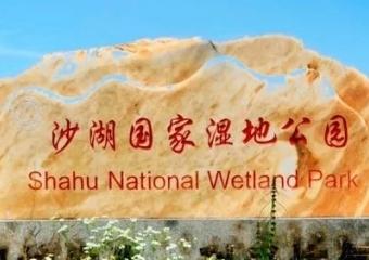 仙桃沙湖國家濕地公園美景來一波,快來欣賞