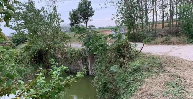 仙桃78座危桥改造,明年底全部完成