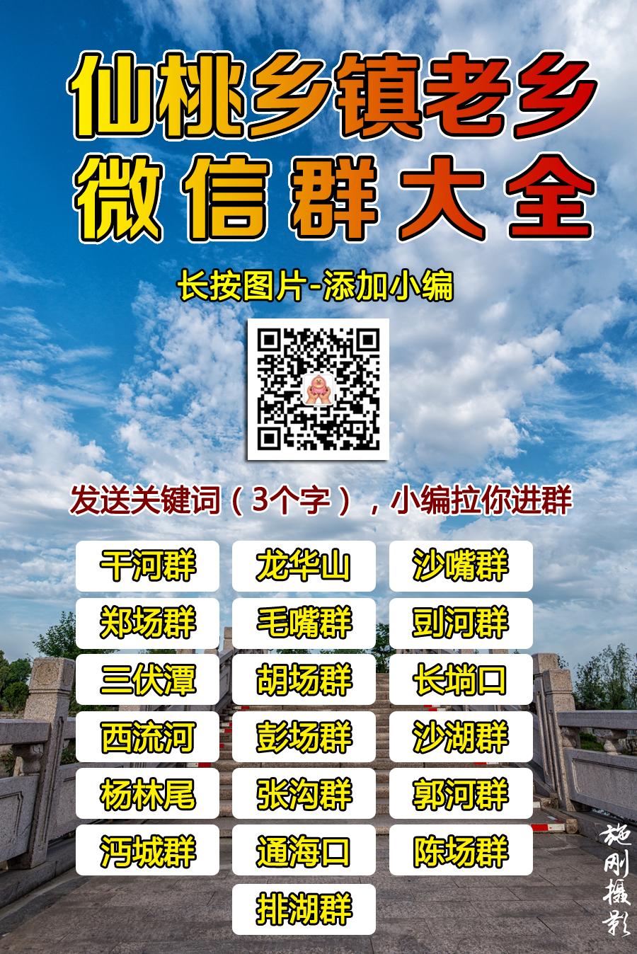 DSC_9933_副本.jpg