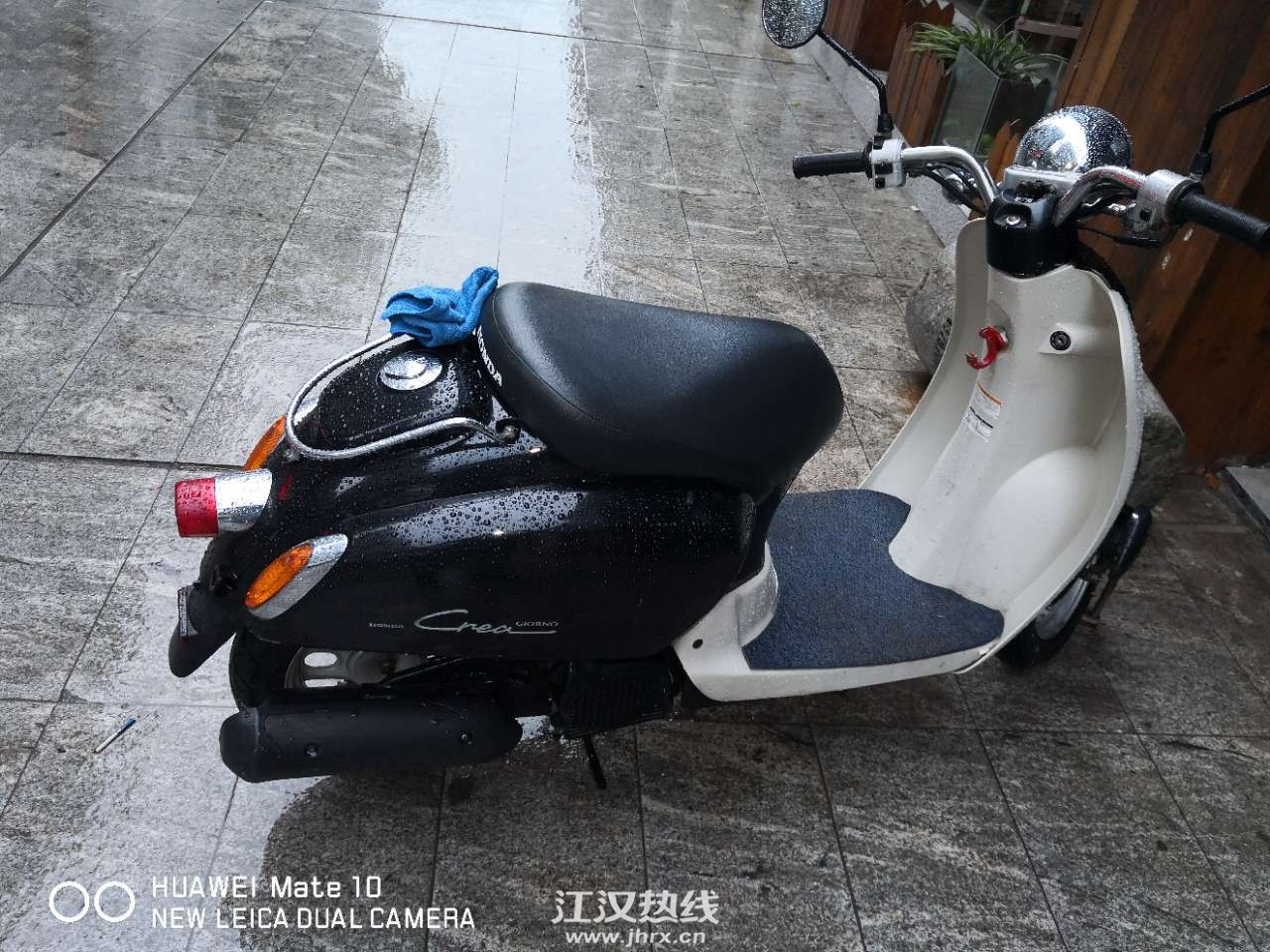 现货本田熊本77期50CC踏板小龟王摩托车日本原装... - 北京58同城