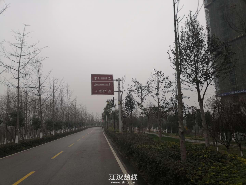 襄河公园,美美的。
