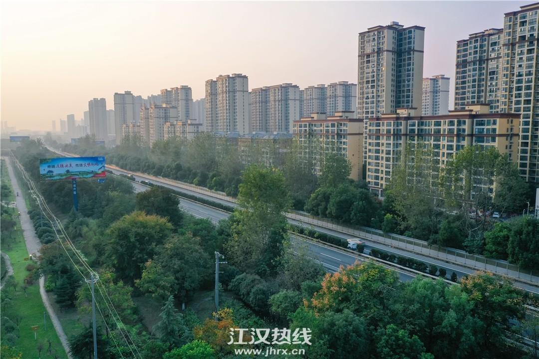 刘口高架3.jpg