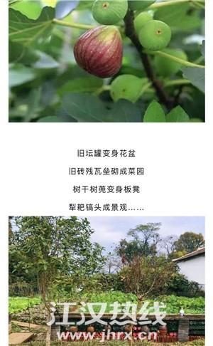 微信图片_202012221621114.jpg
