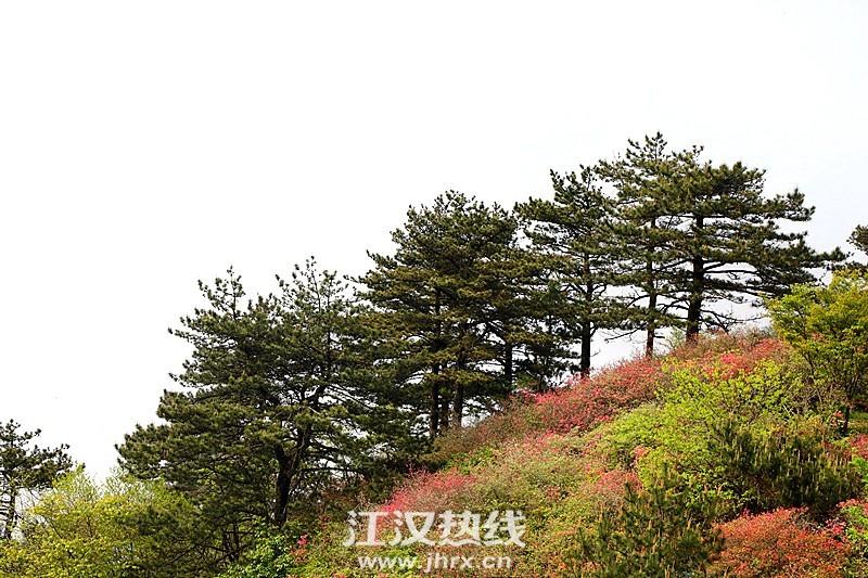 psc (12)_副本.jpg