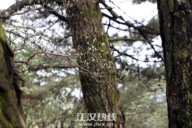 psc (44)_副本.jpg